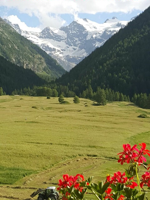 Across the Sant'Orso meadows, photo by Katherine Heery