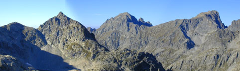view of the tops